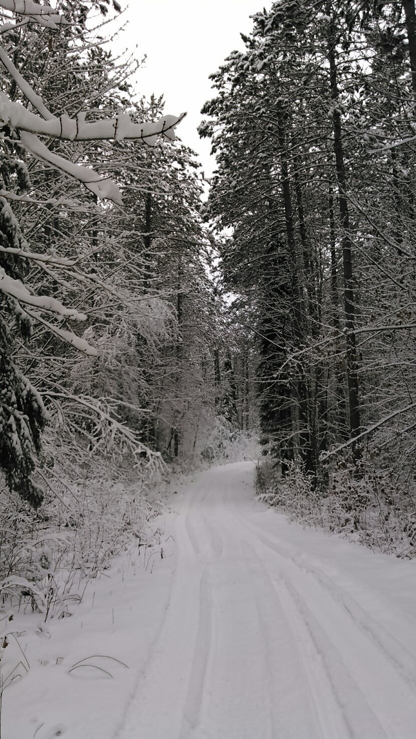 Northern Wisconsin Snowmobile Trail Map