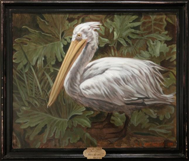 Hippolyte-Alexandre Michallon, Pelican