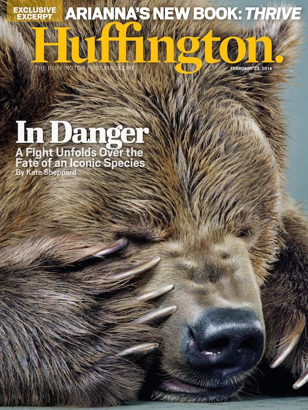 Jill Greenberg, The Huffington Post Magazine, Grizzly Bear