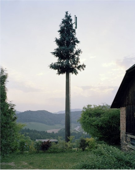 Robert Voit, New Trees, Haberberg, Germany