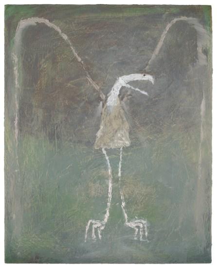 Scott Daniel Ellison, Terrorbird