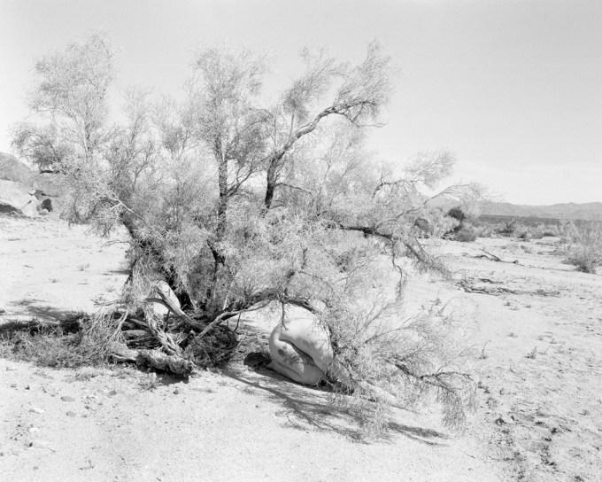 Margaret Kristensen, Brush