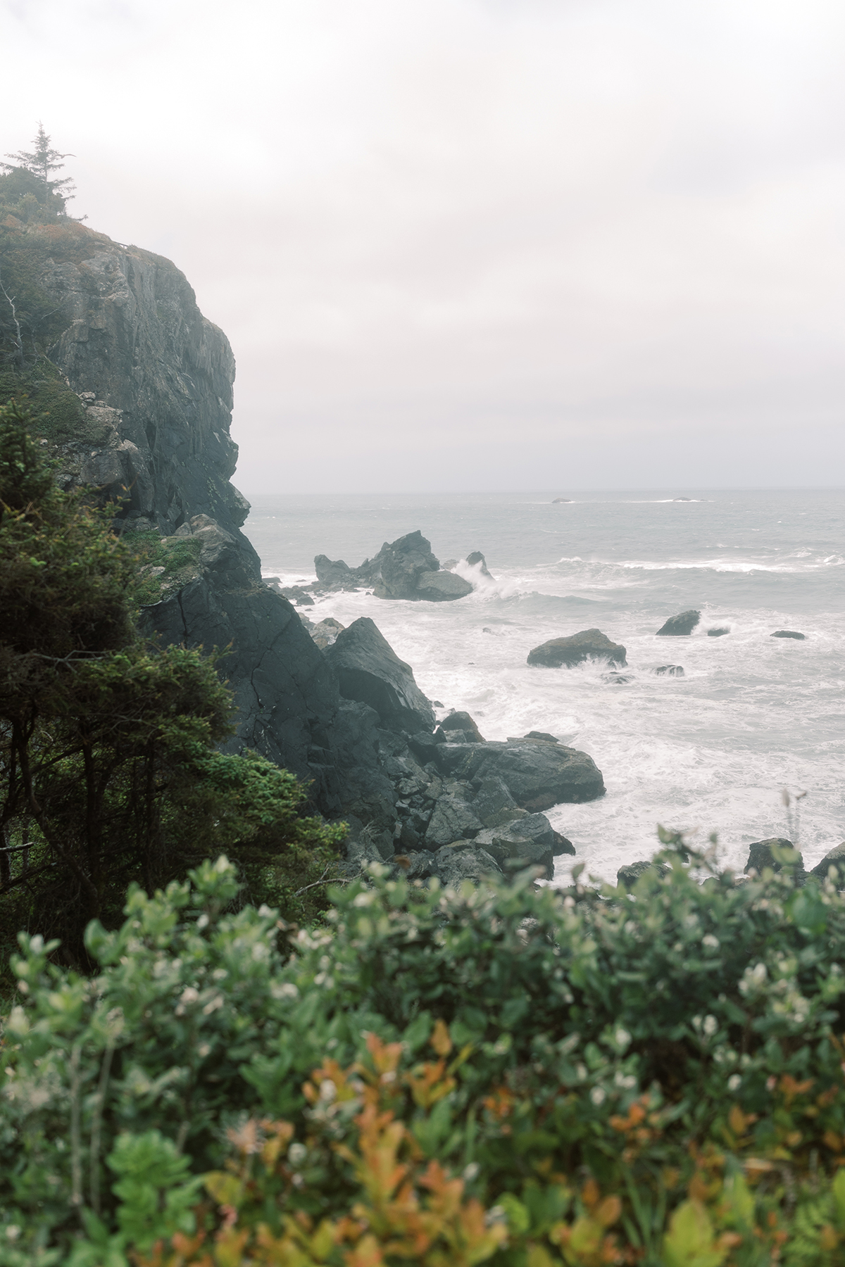 Patricks-Point-State-Park-elopement-1 (1)