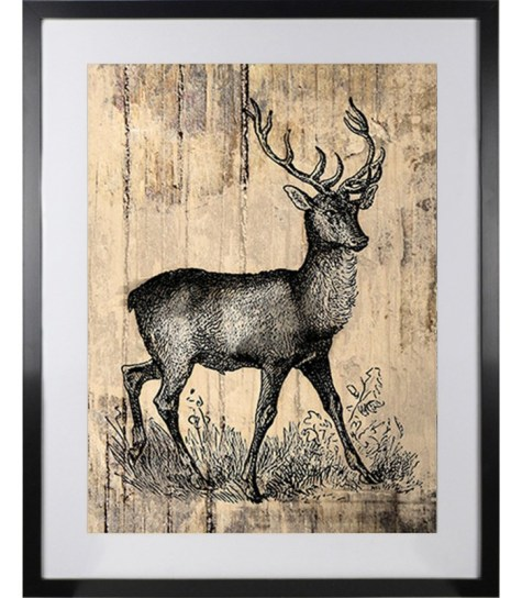 Stag Deer Picture   Newry Artwork