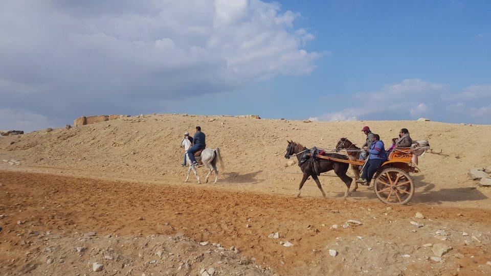 kairo hästar