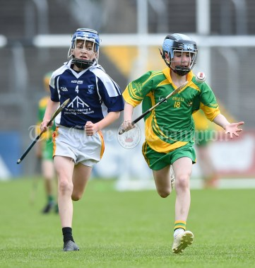 Joe Murnane of Bridgetown in action against Conor Walsh of Kilkishen/O Callaghan's Mills during their Schools Division 5 final at Cusack Park. Photograph by John Kelly