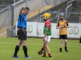 120619 Referee Jim Hickey lays down the law during the Division 4 Hurling Clare Primary School Finals .Pic Arthur Ellis