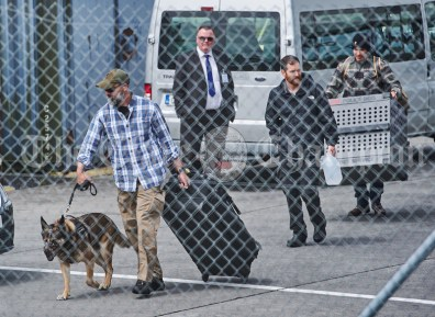 A muzzled dog is lead away after disembarking from a US Airforce Super Galaxy plane which arrived on Monday at Shannon Airport. Photograph by John Kelly.