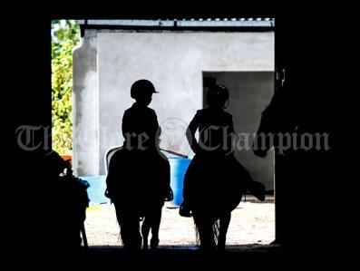 310819 The Clarecastle Show in the Clare Equestrian Centre Doora, on Saturday.Pic Arthur Ellis.