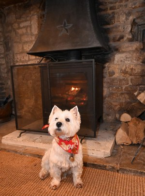Staying warm by the fire.