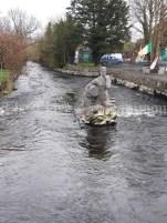 Miller in river O'Garney Sixmilebridge. Nuala Cusack