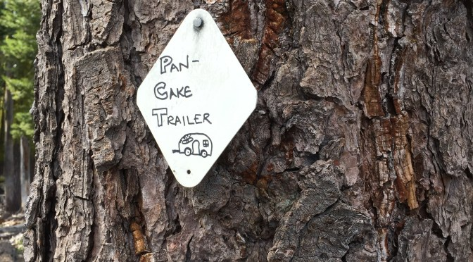 PCT Days 88-100: To the Halfway Point