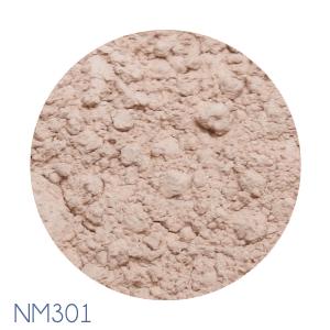 NM301