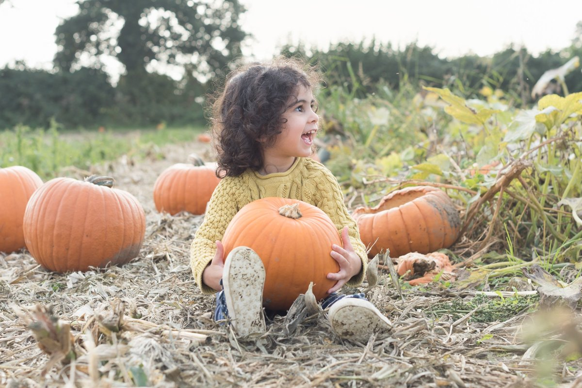 How to take great photographs of your children at the Pumpkin Patch