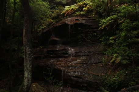Cascading Water at Witches Leap