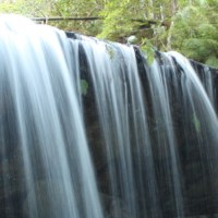 Fitzroy Falls and The Bridge