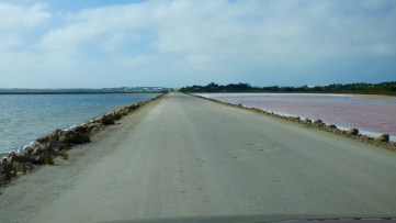 Along the road into Point Sinclair - Boys to the left, girls to the right.
