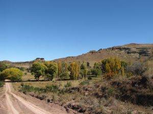 Clarens to Fouriesburg The Caledon Loop