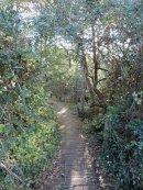 Walking Path down to the Menai Straight
