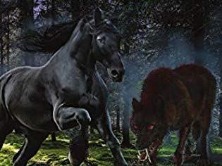 The Bloodwolf War by Paula Boer
