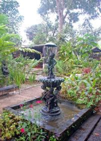 fountain (c) Clarice Fong