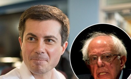 Pete Buttigieg: Trump & Bernie Voters Both Harbor 'Anger and Disaffection'