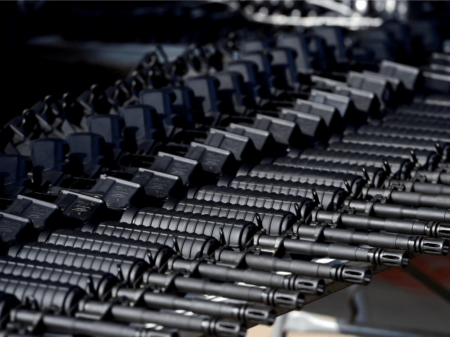Business Software Maker Tells Gun Store Clients to Stop Selling AR-15s
