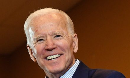 Poll: Joe Biden Dominates South Carolina with 31% Lead