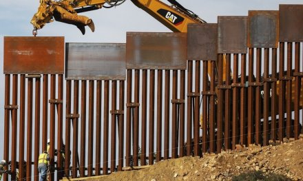 Mayor orders private company to cease and desist construction of border wall in his city over reported lack of permits
