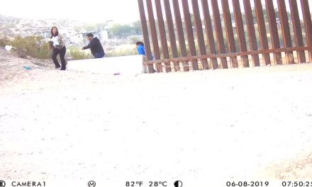 """Brian Kolfage on Twitter: """"We caught nearly 1000 people crossing on video here this weekend.  Sunland Park & New Mexico is being invaded! see my earlier tweet about the welfare each are given  @Lrihendry @IngrahamAngle @gehrig38 @gehrig38 @StumpforTrump @RyanAFournier @Rambobiggs @holliesmckay @Jim_Jordan… https://t.co/p4ZsFWgPGn"""""""