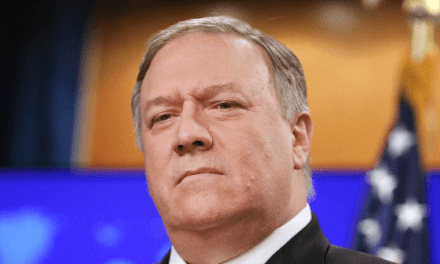 Watch: Fox News' Chris Wallace Badgers Mike Pompeo over Foreign 'Dirt' Comments | Breitbart