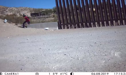 "Brian Kolfage on Twitter: ""BOMBSHELL: @WeBuildtheWall caught Illegals fleeing from border agents hours ago! 2 miles from our wall. ITS A DAMN CRISIS in sunland park New Mexico! These people didn't want to be caught.  @DonaldJTrumpJr @StumpforTrump @RyanAFournier @gehrig38 @Lrihendry  @realDonaldTrump… https://t.co/yytAg3et1V"""