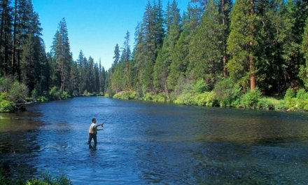 Trump administration to expand hunting, fishing access on 1.4 million federal acres