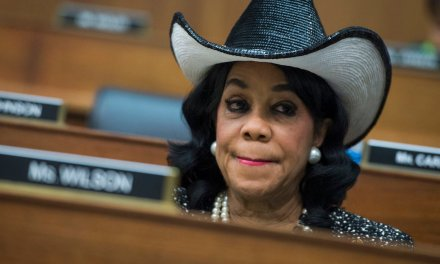 Dem Rep. Frederica Wilson vows to prosecute people for 'making fun of members of Congress' online