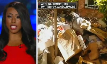 She went on Fox News to expose the conditions in West Baltimore, and now she's under SIEGE from hackers, media, trolls