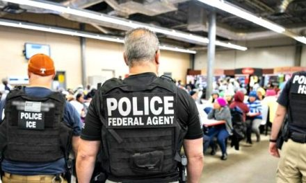 Trump: ICE Deportation Raids a 'Good Deterrent' to Illegal Immigration