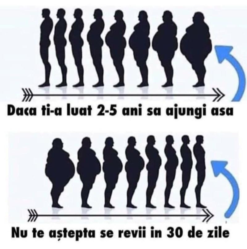 slabit 8 kg
