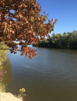 Fall colors on the Rock River