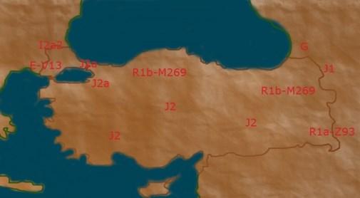 Turkish females Y DNA haplogroups