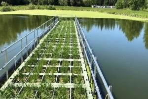 Kenilworth Sewage Treatment Plant, Unitywater
