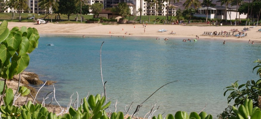 Some timeshare resales are now illegal
