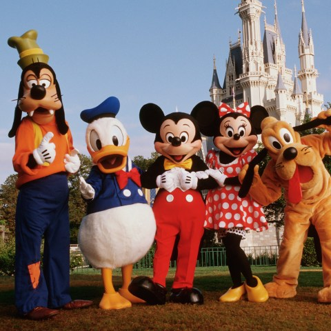 5 questions to ask before visiting Disney World