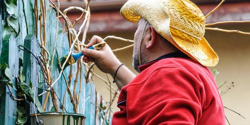 4 essential home maintenance jobs for spring