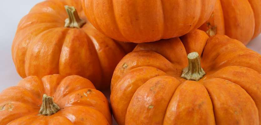 Cheerios, Special K preparing for fall with new pumpkin flavors