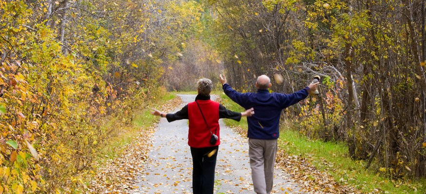 Retire sooner using the 'Fill The Gap' strategy