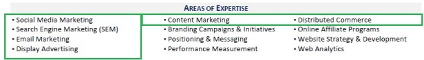 Areas of expertise section on resume