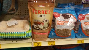 marshall ferret diet