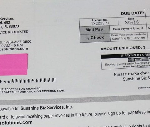 Scam alert: Don't fall for this ad masquerading as a bill!