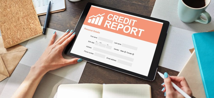 Credit report application