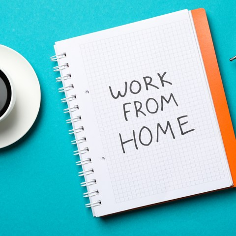 Entry-Level work-from-home jobs